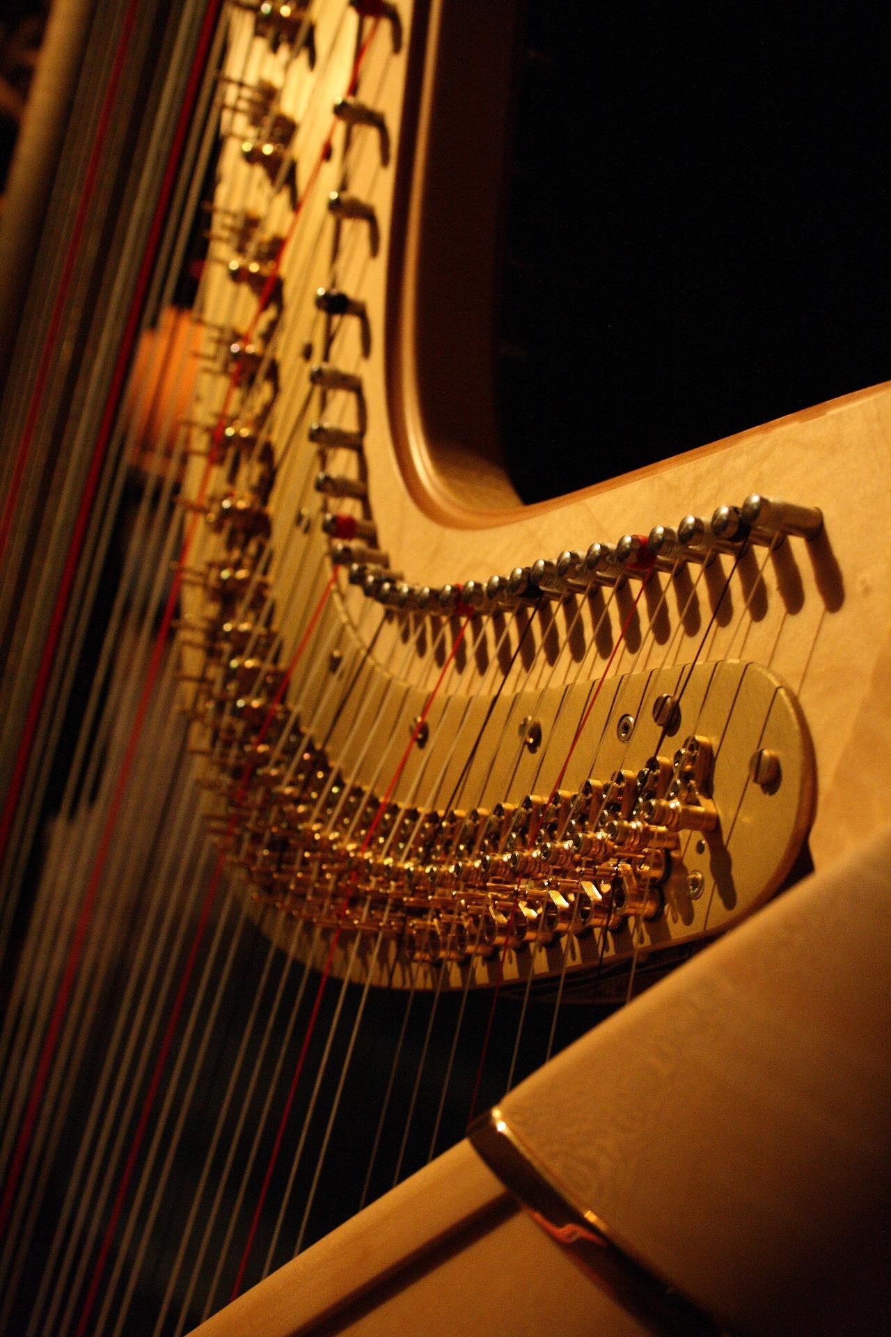 Eine Kleine Nachtmusik - Concert in aid of Dar il-Kaptan